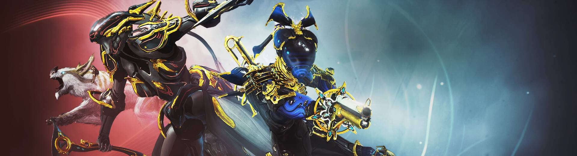 Warframe Trinity And Nova Prime Vault Available Now Nova prime prices from the trade chat and warframe market. warframe trinity and nova prime vault